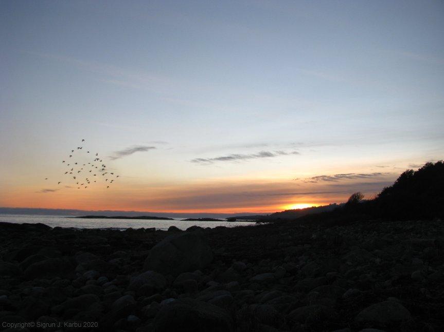 Fredag og solnedgang påBotne